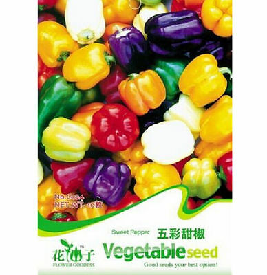 fd1285 Sweet Pepper Seed Colorful Ornamental Pepper Seeds *1 Pack 20 Seeds ☆