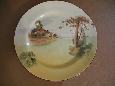 """Royal Doulton   Seriesware Rack Plate D4987   """" Cottage  Series """"   10 3/8 """""""