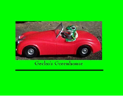Geico GECKO in his RED CAR - Very Rare - OOP - Retired - NEW IN ORIGINAL BOX