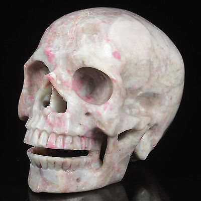 "5.83""Natural Tourmaline Carved Smiling Skull,Collectibles#21Z66"