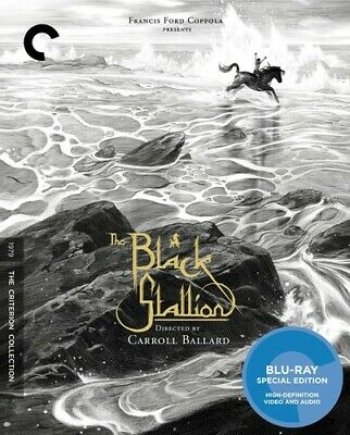 The Black Stallion (Criterion Collection) [New Blu-ray] Subtitled, Widescreen