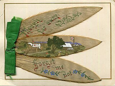 Boer War,Greetings Card,Silver Leaves from Cape Town,Photograph & Illustration.