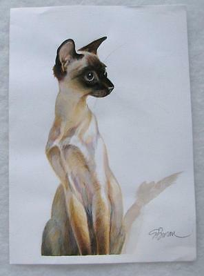 Siamese Cat Original Watercolor S or G Bucan/Brican ?