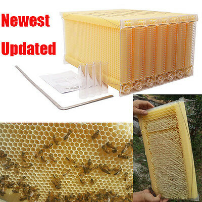 7PCS Bee Hive Frames Upgrated Beekeeping Equipment Honey Hive Beehive Frames