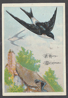 C11425 Good Victorian Embossed Xmas Card: Swallows 1870s