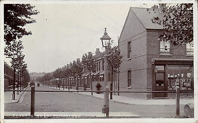 Plumstead. Flaxton Road. Flaxton Drug & Herbal store.