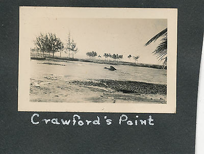 April 1 1946 Tidal Wave Hilo Hawaii Small Photo Crawfords Point