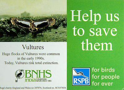 RSPB Pin Badge | Vulture small | Save the  Vulture Campaign [00671]
