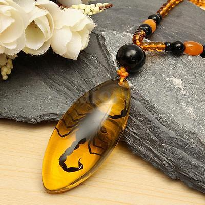 Resin Insect Amber Chinese Specialtie Scorpion Inclusion Pendant Necklace + Rope