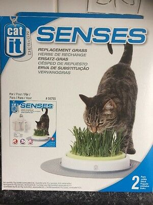 cat it senses Grass Seed Growing Indoor Replacement X 2 Packs Boxed