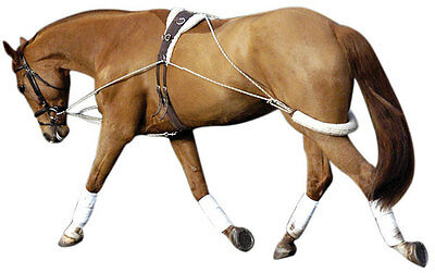 Replacement Synthetic Sheepskin Sleeve for Pessoa Training Aid Lunging Equipment