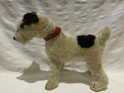 Poorly but very rare Steiff 30s/40s vintage Foxy fox terrier dog.