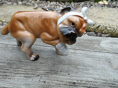 Superb pottery Bull dog bandaged head