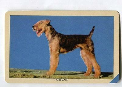 1950's Orange Crush Dog Picture trading card - Airedale Terrier