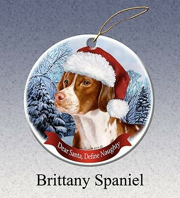 Dear Santa Define Naughty Ornament - Brittany HO050