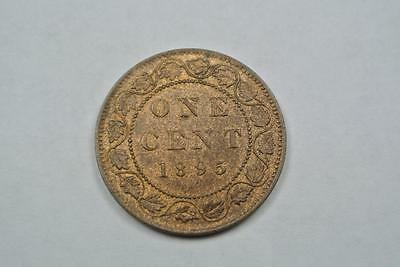 1895 Canada Large One Cent Coin, Penny, Unc Condition - C2137