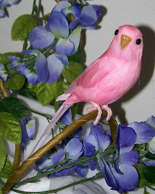 TROPICAL BIRD Pink PARAKEET BUDGIE REPLICA Collectible FAKE taxidermy for sale