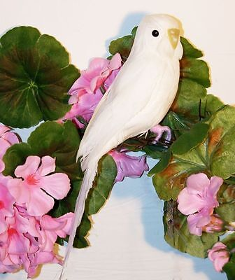 Tropical White PARAKEET Bird For Sale BUDGIE REPLICA Prop FAKE taxidermy NEW