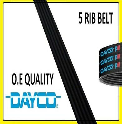DAYCO POLY V-RIBBED BELT 5PK1125 5 RIBS 1125MM AUXILIARY FAN DRIVE ALTERNATOR
