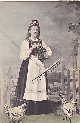 Old Vintage Postcard Norway Lady In Costume Knitting Two Chickens Rake 1909