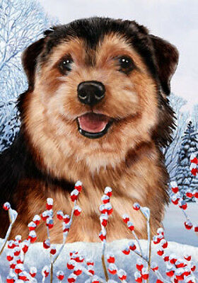 Large Indoor/Outdoor Winter Flag - Norfolk Terrier 15225