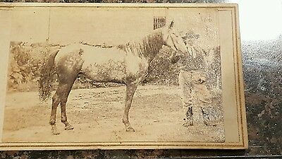 Possible Id'd Civil War Soldier and His Horse