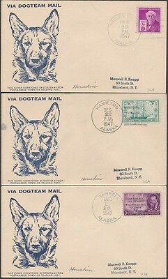14 different 1944-1948 Dog Team Mail Alaska Cachet Covers - all pictured - look!
