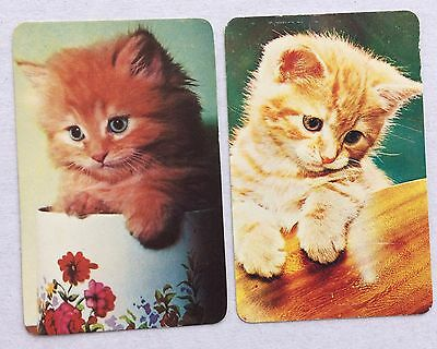 Vintage Swap / Playing Card Pair - Cute Cats/Kittens in Bowls - Blank Backs