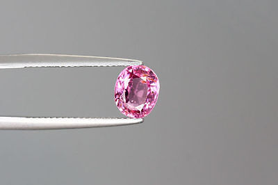 1.880 Ct 100% NR' HOT RICH SPARKLING TOP PINK BUR-MESE UNHEATED RARE SPINEL~!!!