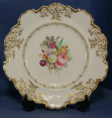 Victorian Hand Painted Floral Study Plate in White & Gilt