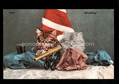 """South Africa Boer War """"mafeking"""" With Toy Cannon Postcard E20C - 01"""