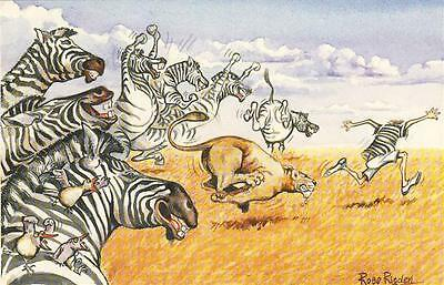 "unposted glossy humorous postcard ""Lion and zebra chase"""
