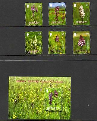 (k6)  JERSEY NATURE WILD ORCHIDS SET & MINI SHEET MNH COLLECT OR POSTAGE
