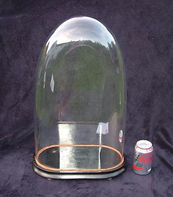 "Huge 23"" High Antique Glass Dome Display Case Clock Doll Or Taxidermy"