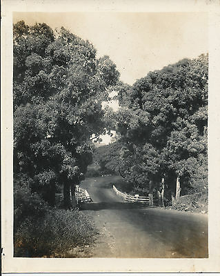 1928 Kings Highway Oahu Hawaii Photo