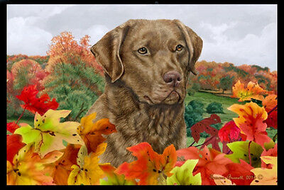 Indoor/Outdoor Fall Floor Mat - Chesapeake Bay Retriever 40070