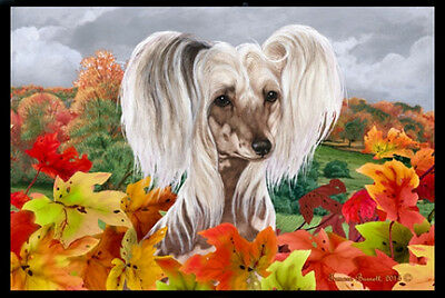 Indoor/Outdoor Fall Floor Mat - Chinese Crested 40068