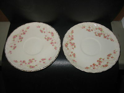 Pope Gosser Vintage Dishes With Mini Rose Buds