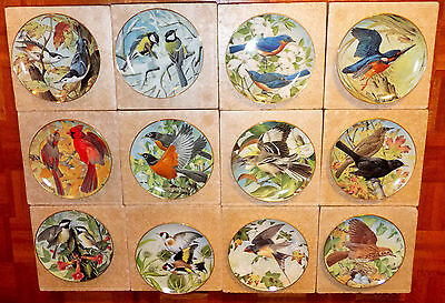 Garden Birds of the World Set of 12 Collectors Plates by Basil Ede Franklin