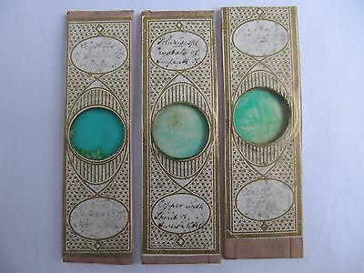 3 Very Interesting Antique Microscope Slides . See Labels