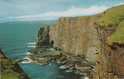 Handa Island, Sutherland - Real Photo View of The Cliffs - Unposted