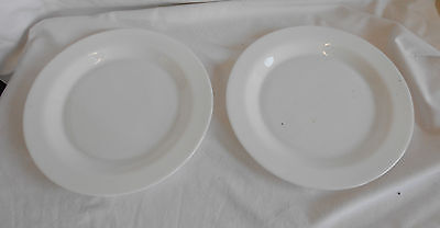 STUNNING Vintage Collectable PAIR Of TRADITIONAL 'ARCOPAL FRENCH WHITE PLATES