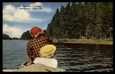 Canoeist Viewing Wild Life Mn Colored Postcard By Ct Art Colortone