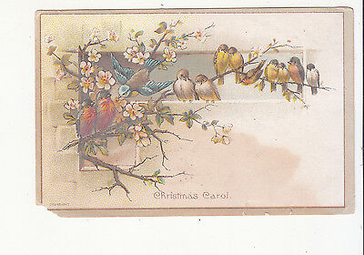 Christmas Carol Birds on Branches Singing  Vict Card c 1880s