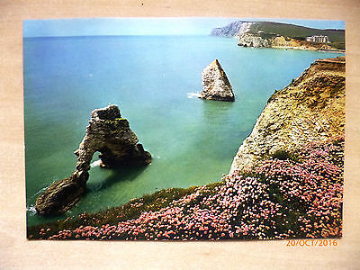 Vintage Giant Unposted Postcard - 21.3cm x 14.5cm - STAG ROCK I.O.W.