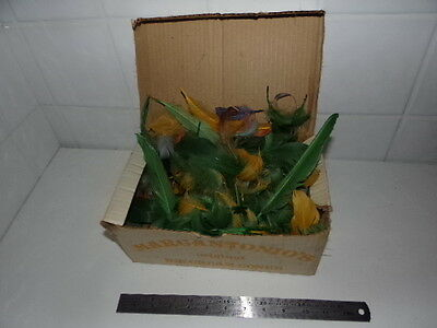 Large Box of Feathers Green Yellow Blue Pink Fashion Accessories Craft Fly Tying