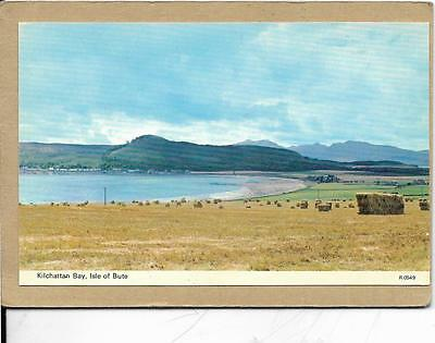 Kilchattan Bay - Isle Of Bute - Harvested Hay - Postcard.