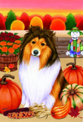 Garden Indoor/Outdoor Autumn Flag - Shetland Sheepdog Sheltie (TP) 670141