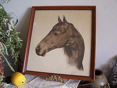 VTG 1930s Seabiscuit Signed Print,WALLACE,Framed Race Horse Picture,Drawing