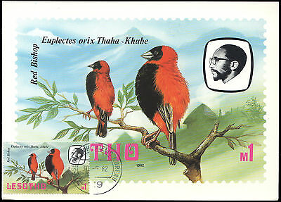 Lesotho cover, birds, 1982